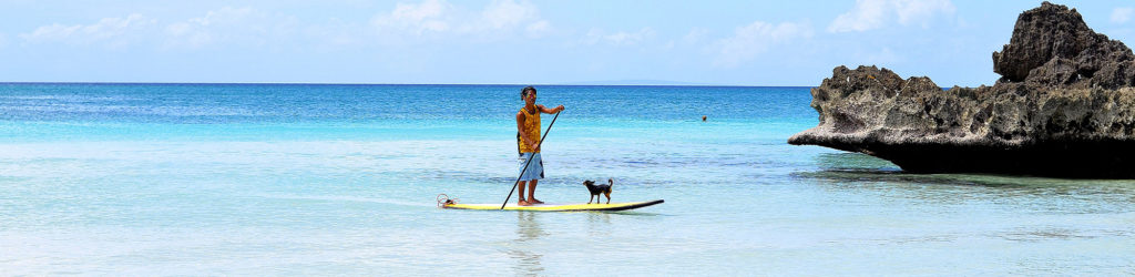 best-paddleboard-dog-pads-and-mats-for-SUP-or-ISUP